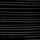 Câble Noir 0.42mm Vendu par 1 mètre