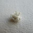 Rose 10mm Blanc